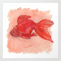 'Big Fat Goldfish' Watercolour Illustration Art Print