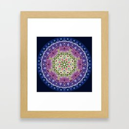Colourful Dragonfly Mandala Framed Art Print