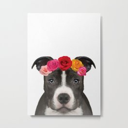 Staffy Rose Metal Print