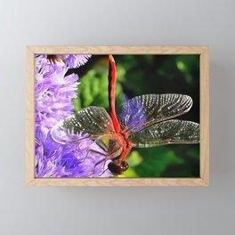Red Dragonfly on Violet Purple Flowers Framed Mini Art Print
