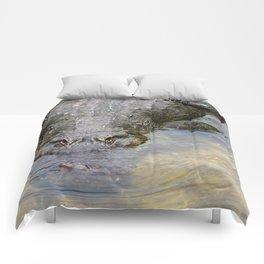 Gator Boy Comforters