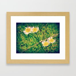 breath of summer Framed Art Print