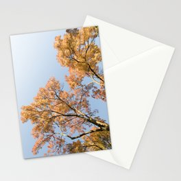 Fall leaves #3 - Warm Autumn Colors - Abstract Minimalist Fine Art Photo Print Stationery Cards