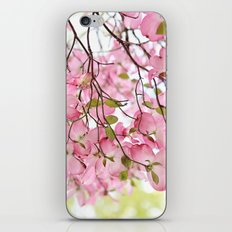 pink dogwoods iPhone & iPod Skin