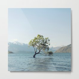 That tree in the middle of the lake Metal Print