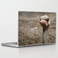 ostrich Laptop & iPad Skins featuring Ostrich by S0ultrain Photography