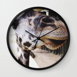 Giraffe Nose Wall Clock
