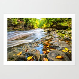 Autumn Leaves and Raging River Art Print