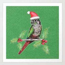 Christmas green cheeked conure Art Print