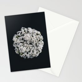 White Blossoms on Black Stationery Cards