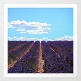 PROVENCE - Lavender | France | Travel | Summer | Purple | Nature | Landscape Art Print
