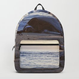 sunset snooze Backpack