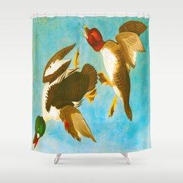 Golden Eye Duck John James Audubon Scientific Birds Of America Illustration Shower Curtain