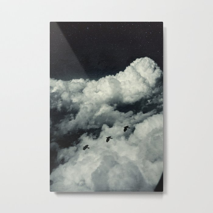 A Bird's Dream Metal Print
