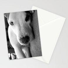 I Triple Dog Dare You Stationery Cards