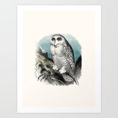 Wise man Art Print