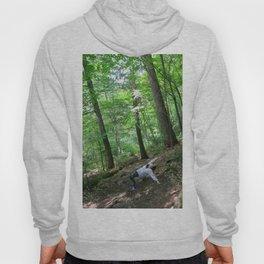 Forest Yoga Hoody
