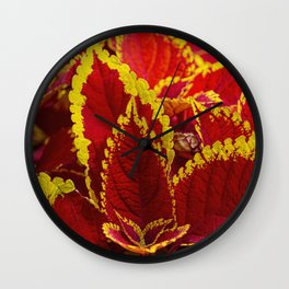 Colourful Coleus Wall Clock