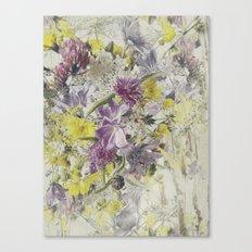 Soft Vintage Floral  Canvas Print