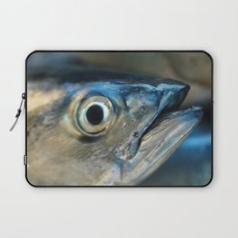 Big eye, tuna, fish, still life, photo, fine art, print, nature, sea, fishing, detail, blue Laptop Sleeve