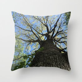 Forest Therapy Throw Pillow