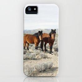 Desert Horse Pair iPhone Case