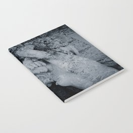 Burden Notebook