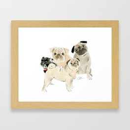 Pug Dogs Pugs Framed Art Print