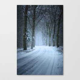 A Winter Wilderness Canvas Print