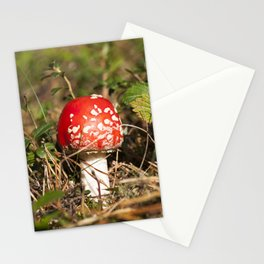 red fly agaric Stationery Cards
