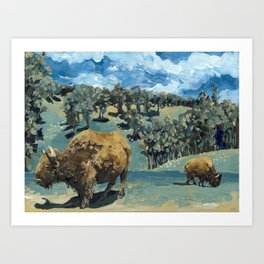 North American Bison Art Print