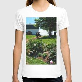 Horse Drawn Carriage on Farm in PEI T-shirt