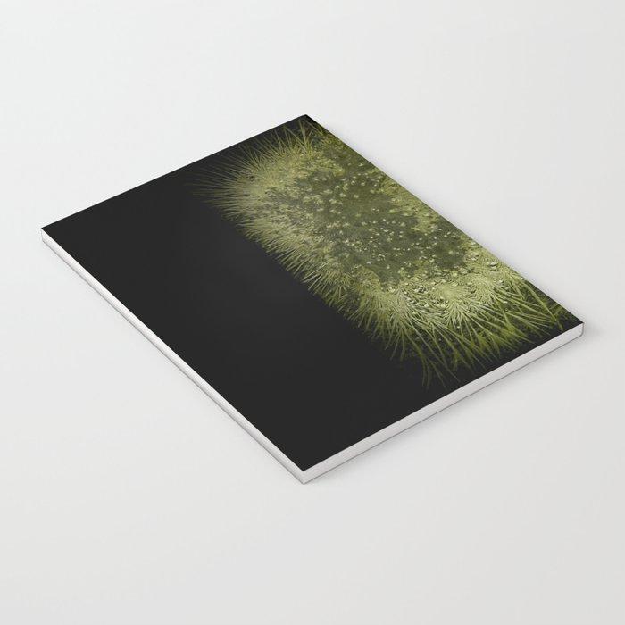 Chlorella Notebook