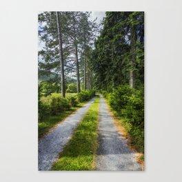 Country Path Walks Canvas Print
