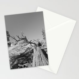 Lost Life Stationery Cards