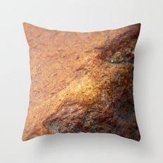 A Red Rock :: Alaskan Boulder Throw Pillow