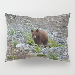 Black bear cub in Jasper National Park | Alberta Pillow Sham