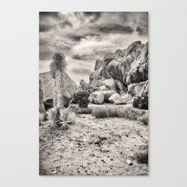 Joshua Tree National Park Canvas Print