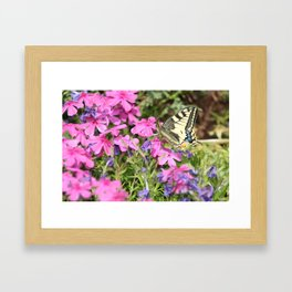 Little butterfly Framed Art Print