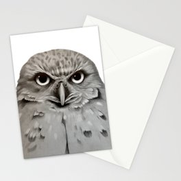 Burrowing Owl in Graphite Stationery Cards