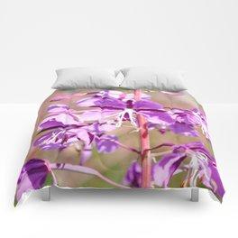 Fireweed Comforters