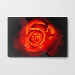 Rose 03 Metal Print