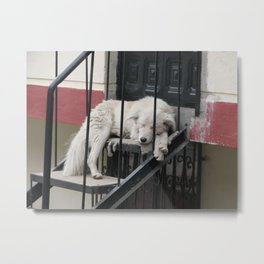 The Restful Guardian Metal Print
