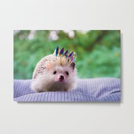 Hedgehog Wearing a Crown (Color) Metal Print