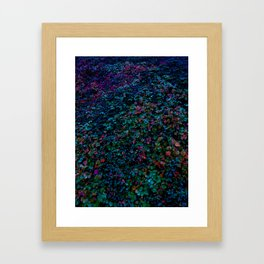 Cotoneaster in Cold Colours Framed Art Print
