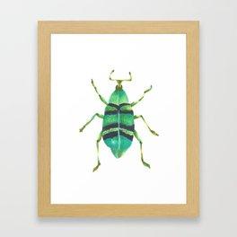 Beetle 2 Framed Art Print