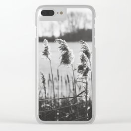 December at the Lake Clear iPhone Case