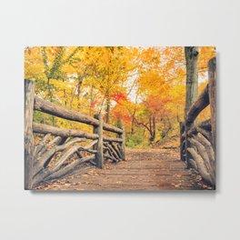 Autumn Path Central Park New York City Metal Print