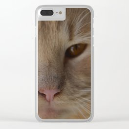 sandy, close up Clear iPhone Case