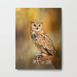 Great Horned Owl Wildlife Photography Metal Print